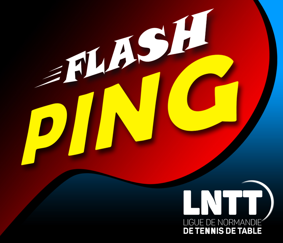 Logo Flash Ping
